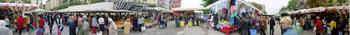 sacca-fisola-market-flat.jpg